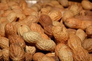 peanuts-618544_640