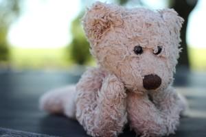 stuffed-animal-450473_640