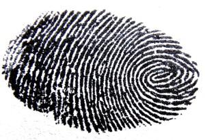 fingerprint-456483_960_720